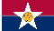 City of Dallas Flag 3x5 4x6 5x8 6x10